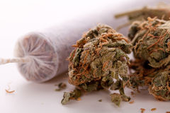 Free Close Up Of Dried Marijuana Leaves And Joint Royalty Free Stock Photo - 65298305