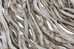 Free Close Up Of Dry Vine Royalty Free Stock Image - 94086156