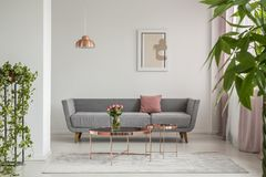 Free Close-up Of Leaves In An Elegant Living Room Interior With A Grey Couch And Copper Tables Decorated With Roses. Real Photo Stock Photos - 126409053