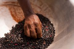 Free Close Up Of Old African Woman Thin Hand Holding Black Beans Outdoor Inside Pot Stock Photo - 125594350