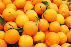 Close Up Of Oranges Stock Images