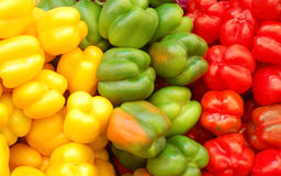Close Up Of Red, Yellow And Green Peppers Stock Images