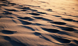 Free Close-up Of Sand Surface With Footprints Leveled Royalty Free Stock Image - 39054036