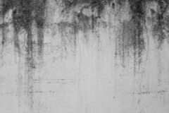 Free Close-up Of White Cement Crack Wall And Peeled Paint Caused By Water And Sunlight. Peel Wall Of White House Paint With Black Stain Royalty Free Stock Image - 176005576