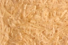 Close up Oil palm fiber under the microscope for Chemical analysis in Lab. Background Oil palm fiber, Close up Oil palm fiber under the microscope for Chemical stock image
