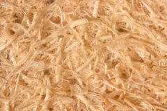 Close up Oil palm fiber under the microscope for Chemical analysis in Lab. Background Oil palm fiber, Close up Oil palm fiber under the microscope for Chemical royalty free stock photo