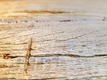 Close-up Old Wooden Table with Scraped Grainy Texture with Selective Focus. Close-up Old Brown Wooden Table with Scraped Grainy Texture with Selective Focus stock image