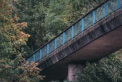 Old blue bridge disappearing in the forest. royalty free stock photos