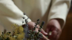 Close up of an old man picking dried herbs stock footage