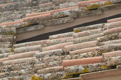 Close up of old roof tiles Royalty Free Stock Image