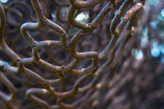 Close up old rusty iron net with blur background Royalty Free Stock Photos