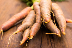 Close up old sort of carrots Royalty Free Stock Photography