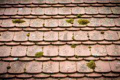 Close up of an old tieled roof Stock Image