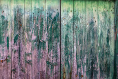 Close up of an old wooden green door. Royalty Free Stock Images
