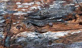 Close up on old wooden post Stock Photo
