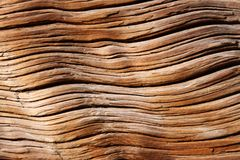 Close-up old wooden texture. Log Stock Photography