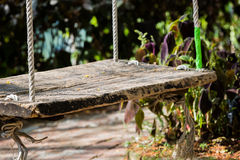 Close up old wooden vintage garden swing hanging from a large tr Stock Photography