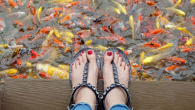 Free Close Up On Girl`s Feet Wearing Silver Sandals And Red Nails With Fancy Carp Swimming In The Pond Background Royalty Free Stock Images - 97491009