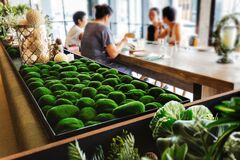 Free Close-up On Rocks That Wrap With Green Grass On The Table With Blur Women`s Group In The Background. Modern Interior Restaurant. Royalty Free Stock Image - 171999026