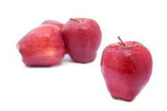 Close up one red apple with selective focus. On white background Royalty Free Stock Image