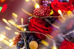 Close up of one red rose with yellow garland. Close up of one red rose arranged with blurred yellow garlands. Composition of dark red rose with hydrangea royalty free stock image