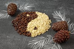 Close up oof cedar pine nuts and cones in the form of yin and yang on blackboard background. Close up of cedar pine nuts and cones in the form of yin and yang Stock Images