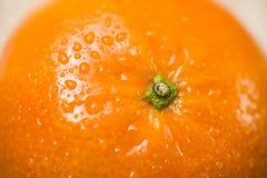 Close-up op een Sinaasappel Royalty-vrije Stock Foto