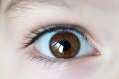 Close-up op jong meisjes bruin open oog royalty-vrije stock afbeelding