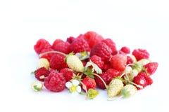 Close-up op vers organische rode rijpe aardbeien en frambozen die op een witte achtergrond liggen De zomer rijpe bessen Stock Fotografie