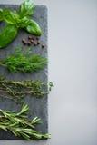 Close-up op verse kruidenkruiden op steensubstraat Stock Foto