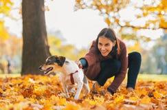 Close-up op vrolijke hond en jonge vrouwenholding het in openlucht Stock Afbeelding