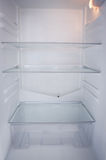 Close up of open refrigerator Royalty Free Stock Image