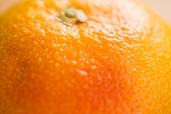 Close-up of orange Royalty Free Stock Images