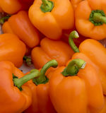 Close up of Orange Bell Peppers background royalty free stock photo