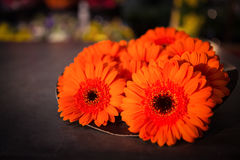 Close-up of orange flower. At flower shop Royalty Free Stock Image