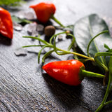 Close up of orange hot chili peppers, sea salt, greenery on crac Royalty Free Stock Photography
