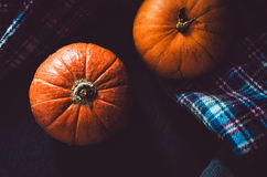 Close up orange pumpkins on plaid background. Fall symbol wallpaper, autumn cosiness. Thanksgiving Day concept. Still Stock Photography