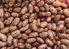 Close up Orange Red beans background and as a texture. Healthy vegetarian dietary food rich in microelements. Healthy royalty free stock photography