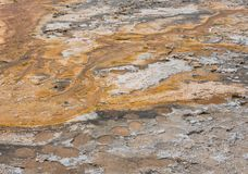Close Up of Orange Residue  From Hot Spring. In Yellowstone Stock Photography