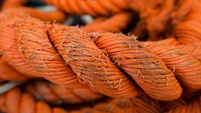 Close up of orange rope Stock Image