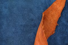 Close up orange rough edge and navy blue leather divide in two s. Ection, fashion texture background,fabric division Royalty Free Stock Photography