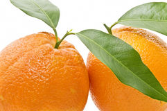 Close-up of oranges with leaves Stock Photo