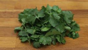 Close up orgânico da salsa italiana no fundo preto, ingrediente de alimento saudável do vegetariano Salsa fresca vídeos de arquivo