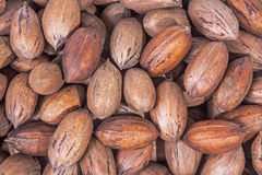 Close Up Organic  Raw  Pecan Nuts Texture and Patterns Royalty Free Stock Photos