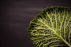 Close up of organic savoy cabbage on the wooden background Royalty Free Stock Photography