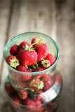 Close up of Organic Strawberry in Green Tin Royalty Free Stock Images