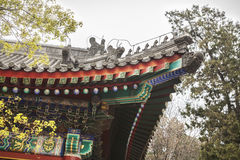 Close-up of ornate Chinese rooftop. Stock Images