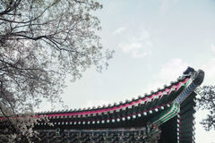 Close-up of ornate roof tiles on Chinese building. Royalty Free Stock Image
