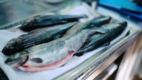 Close-up: os peixes crus na tabela vídeos de arquivo