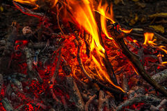 Close up of an outdoor fire burning Royalty Free Stock Photos